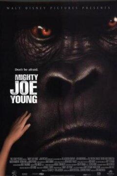 Store Joe Young