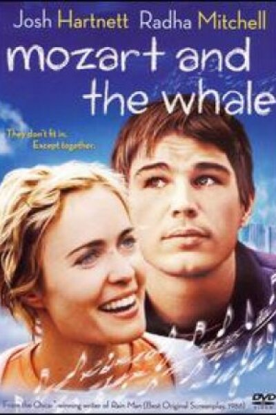 Big City Pictures - Mozart and the Whale