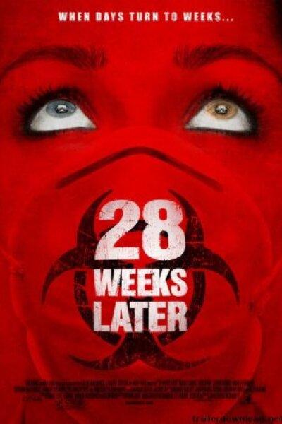 Koan Films - 28 uger senere