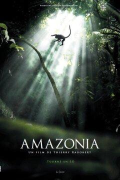 Amazonia - 2D