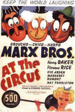 En dag i cirkus