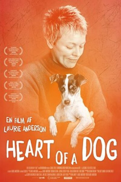 Canal Street Communications - Heart of a Dog