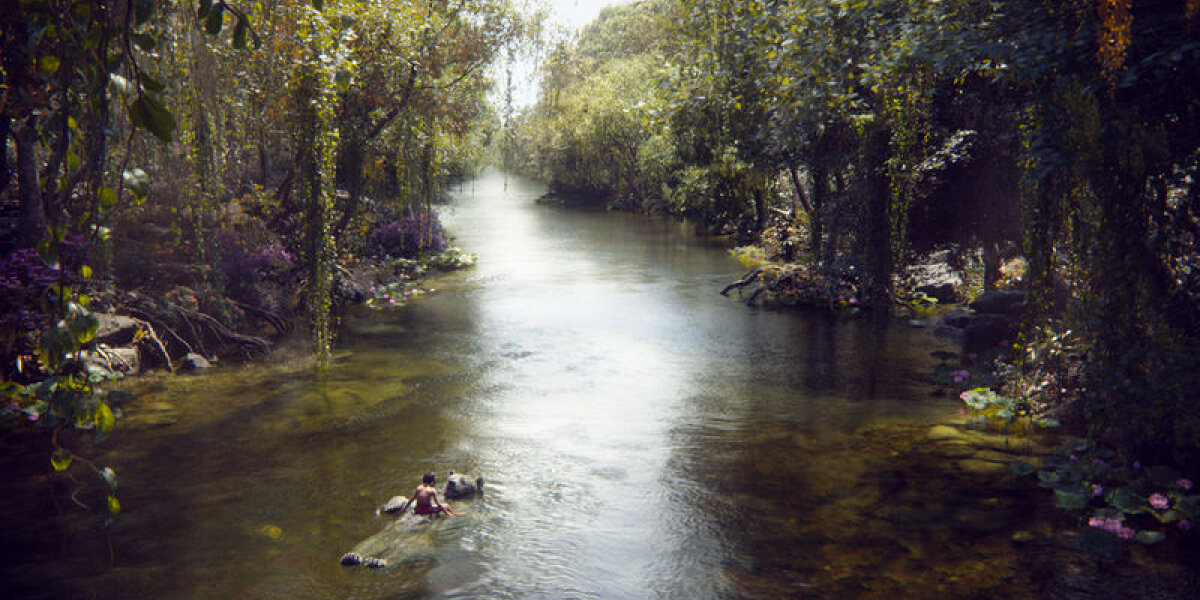Walt Disney Pictures - Junglebogen - 2 D