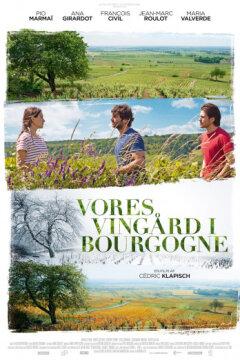Vores vingård i Bourgogne