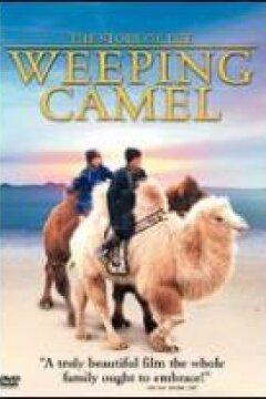 Historien om den grædende kamel
