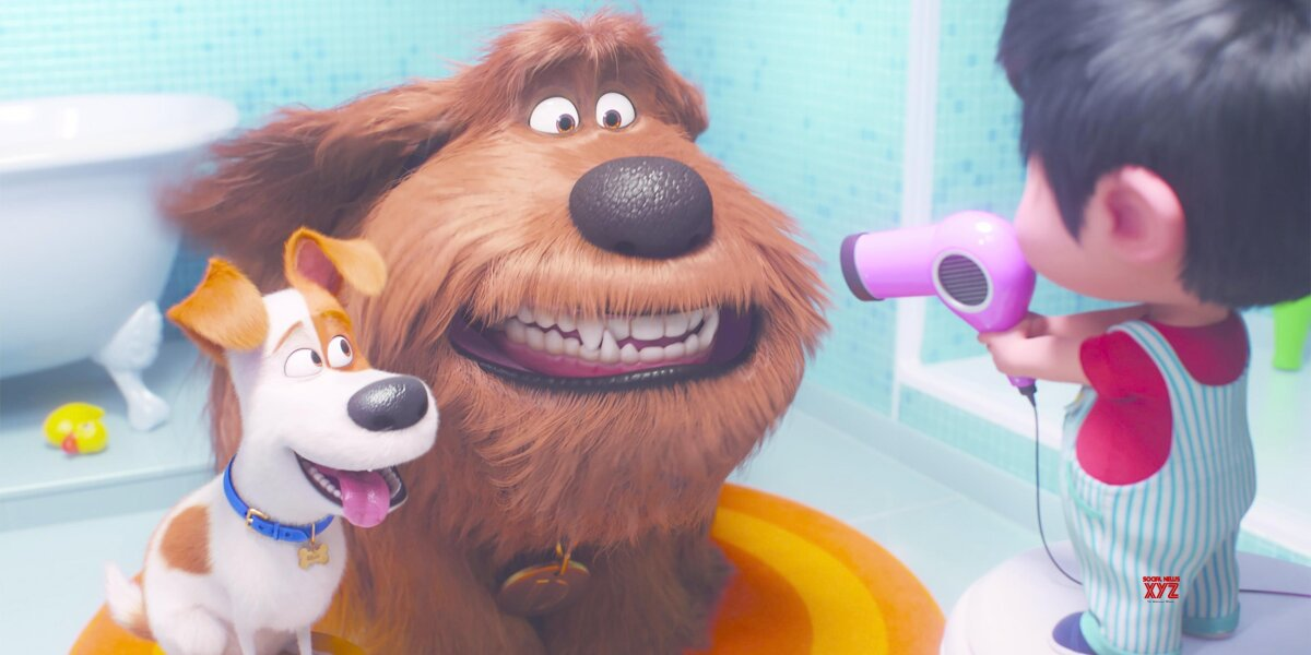 Universal Pictures - Kæledyrenes hemmelige liv 2 - 2D
