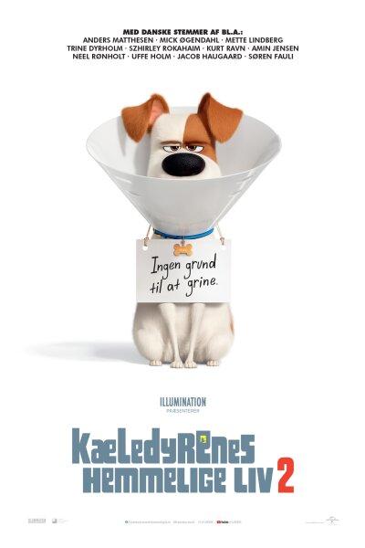 Universal Pictures - Kæledyrenes hemmelige liv 2 - 3D