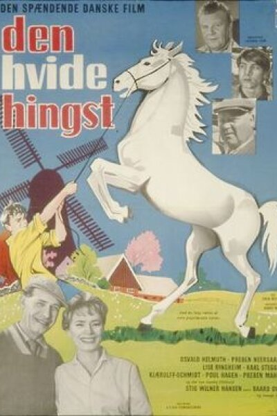 Laterna Film - Den hvide hingst