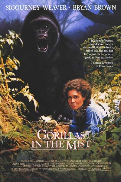 Universal Pictures - Gorillaer i disen
