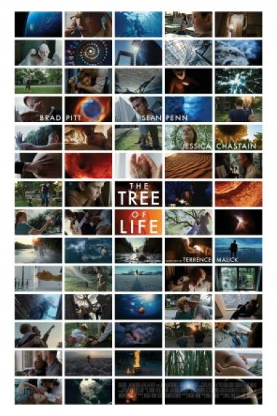 Cottonwood Pictures - The Tree Of Life