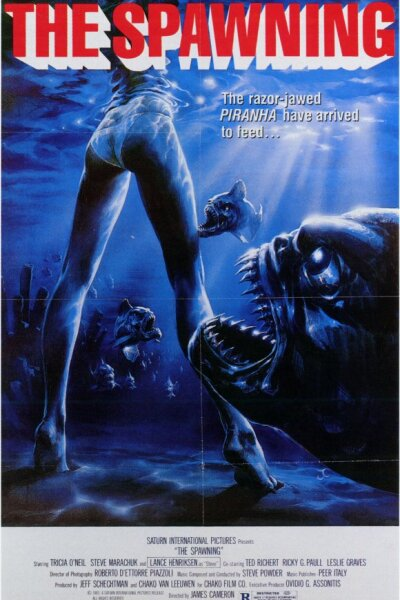 Brouwersgracht Investments - Vampyrfiskene