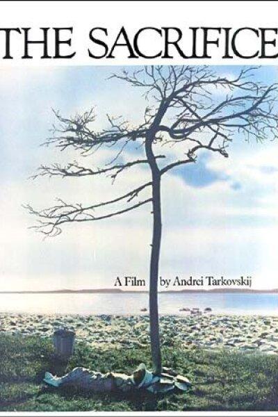 Svenska Filminstitutet (SFI) - Offeret