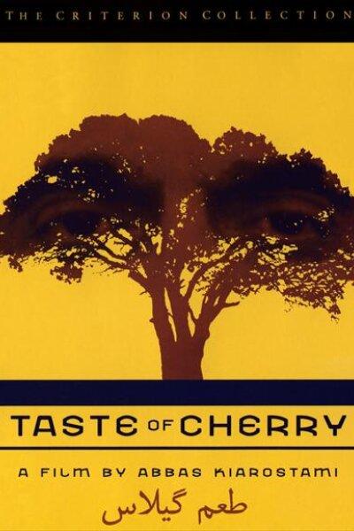 CiBy 2000 - Smagen af kirsebær