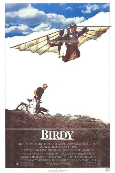A - Birdy