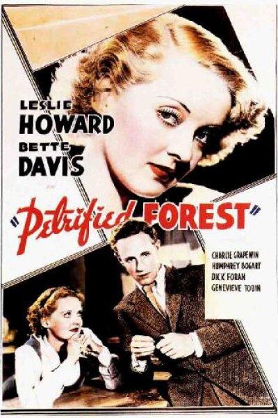 Warner Bros. Pictures - Den forstenede skov