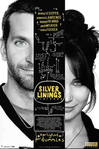 Mirage Enterprises - Silver Linings Playbook