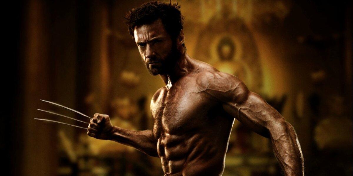 Marvel Enterprises - The Wolverine - 2 D